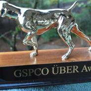 GSPCO Uber Achievement Award